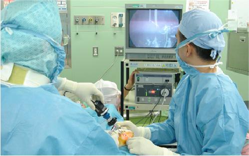 良性骨腫瘍に対する鏡視下腫瘍切除
