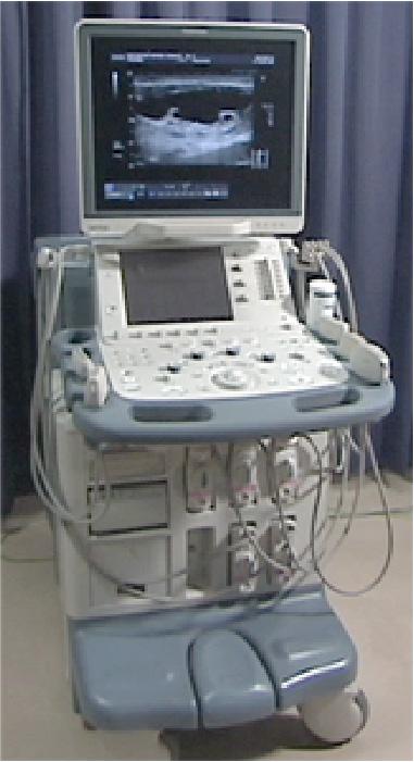 超音波検査による軟部腫瘍の質的診断